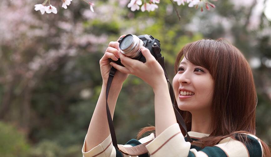 お花見や紅葉など季節ごとの撮影イベント